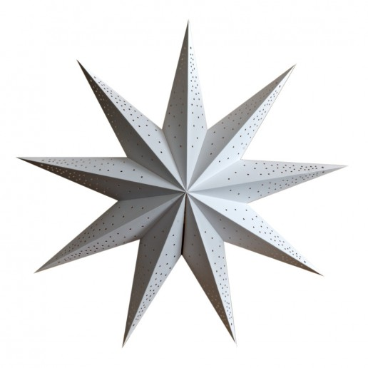 'Anemone' White - Large Paper Star Light