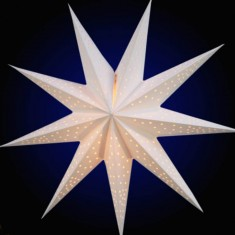 'Anemone' White - Small Paper Star Light
