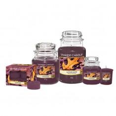 Autumn Glow - Yankee Candlee Family
