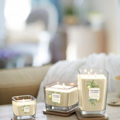 Citrus Grove - Elevation Yankee Candle group