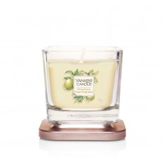 Citrus Grove - Small Jar On Lid Elevation Collection Yankee Candle