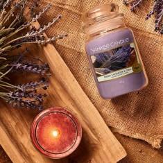Dried Lavender & Oak - Yankee Candle