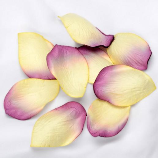 Embossed Paper Petals Confetti - Ivory-Plum