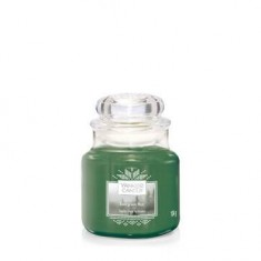 Evergreen Mist - Yankee Candle Small Jar