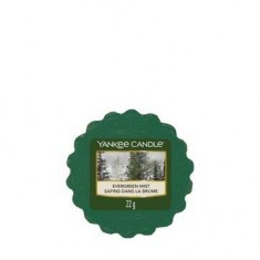 Evergreen Mist - Yankee Candle Wax Melt