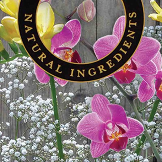 Freesia and Orchid - Ashleigh and Burwood Fragrance Oil For Fragrance Lamps