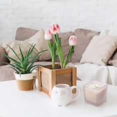 Freesia - Pear - Scented Candle lifestyle