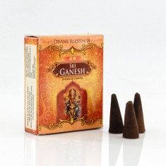 Incense Cones - Sri Genesh.jpg