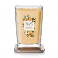 Kumquat & Orange - 2 - wick Large Jar Elevation Collection Open