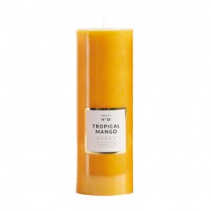 Large Shiny Pillar Candle - Tropical Mango