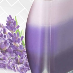 Lavender zoom - Scented Candle in Glass Best Smelling Cheap Sale Discounts