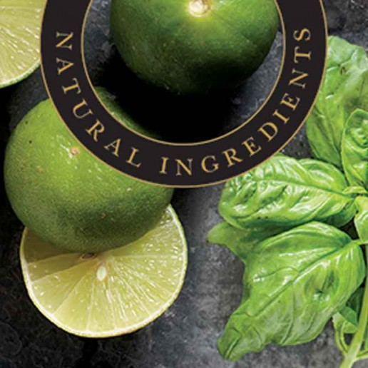 Lime & Basil - Ashleigh & Burwood Fragrance Oil For Fragrance Lamps