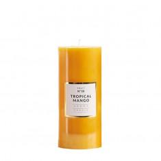 Medium Shiny Pillar Candle - Tropical Mango