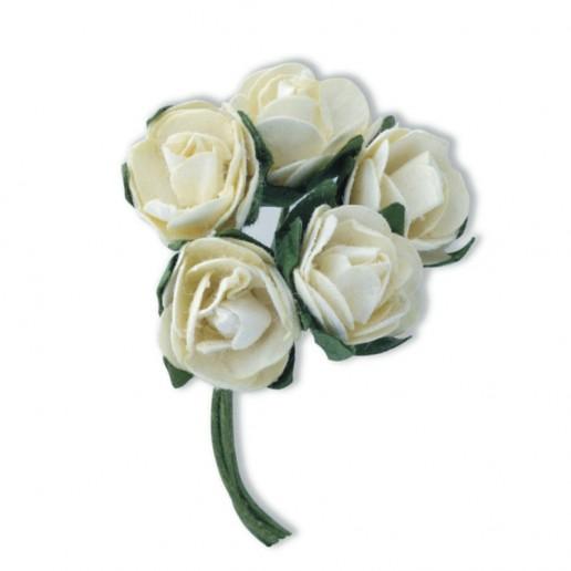 Mini Tea Rose - Ivory