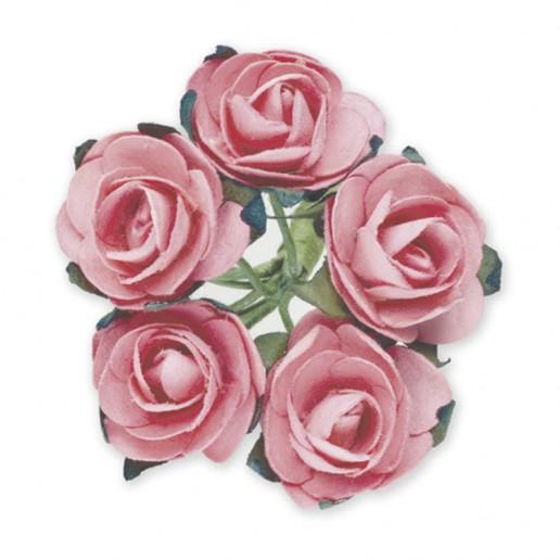 Miniature Tea Roses - Baby Pink 15mm
