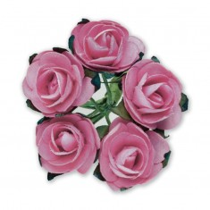 Miniature Tea Roses - Dusky Pink 15mm