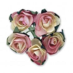 Miniature Tea Roses - Ivory-Pink