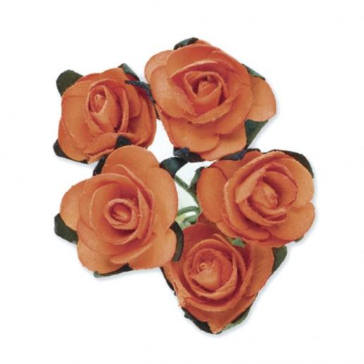 Miniature Tea Roses - Orange 15mm