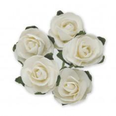 Miniature Tea Roses - White 15mm