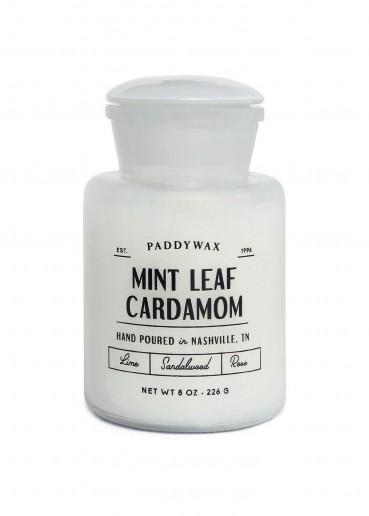 Mint Leaf Cardamom - Apothecary Farmhouse - Paddywax Candle