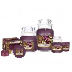 Moonlit Blossoms Yankee Candle Family
