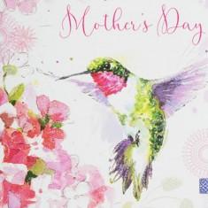 Mother's Day Card - Humming-Bird closeup