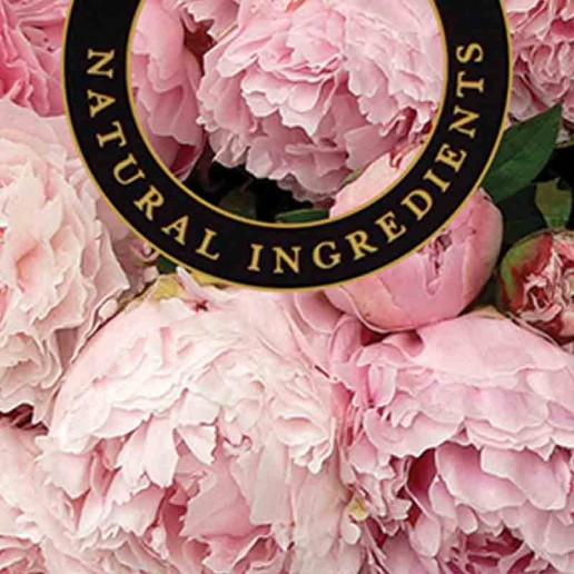 Peony - Ashleigh and Burwood Fragrance Oil For Fragrance Lamps