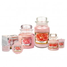 Peony Yankee Candle Scented Candles
