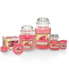 Pink Dragon Fruit -Yankee Candle Scented Candles