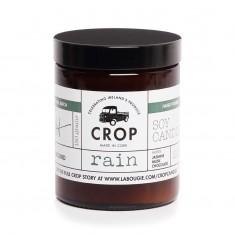 Rain - Crop Soy Wax Candle in Brown Jar