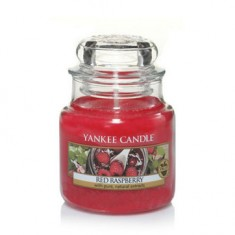 Red Raspberry - Yankee Candle Small Jar