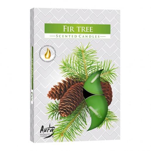 Scented Tea Lights 6pk - Fir Tree