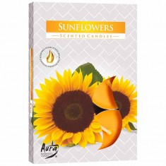 Scented Tea Lights 6pk - Sunflowers