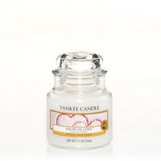 Snow in Love - Yankee Candle Small Jar