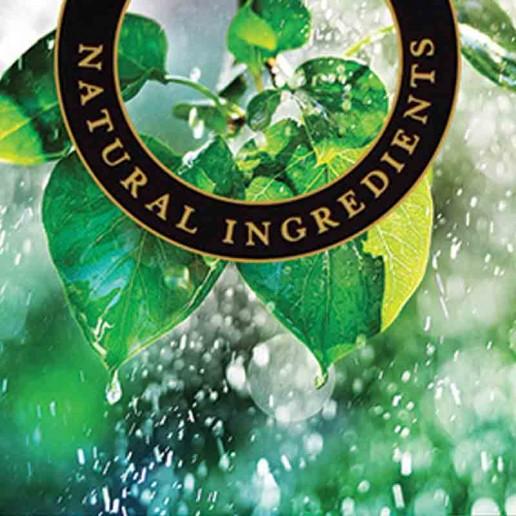 Summer Rain - Ashleigh and Burwood Fragrance Oil For Fragrance Lamps