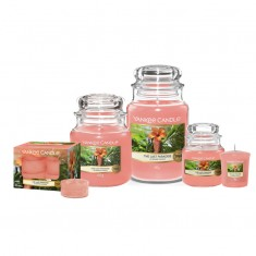 The Last Paradise - Yankee Candle Family