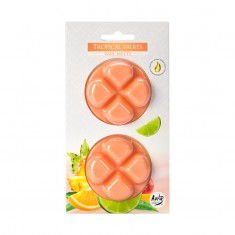 Tropical Fruits Wax Melts