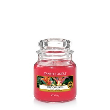 Tropical Jungle - Yankee Candle Small Jar