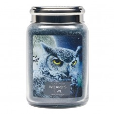 Wizard's Owl - Village Candle Large Jar